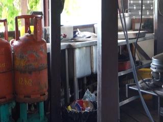 Белки на кухне) Перхентиан-бесар, Малайзия