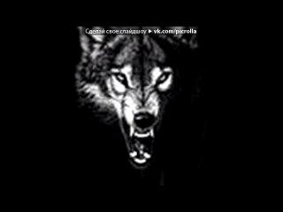 «Волк» под музыку Братка!!!... С Днем рождения!!!Пусть вся Вологда вздрогнет от твоего радостного и позитивного настр - БРАТУХА ПоЗДРАВЛЯЮ,сегодня у тебя днюха,и пусть в этот день, никакой ЗАДРОТ не испортит тебе настроение... ты сильный человек и переживёш все трудности в этом НЕСПРАВЕДЛИВОМ МИРЕ, ну и помни твои друзья, родные всегда рядом с тобой...). Picrolla