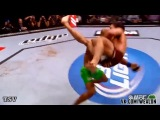 UFC Highlights 2014 - Best Pound for Pound Fighters