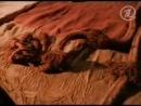 АЛТАЙСКАЯ ПРИНЦЕССА-Плато Укок,курган Ак-Алаха,после извлечения принцессы (мумии) в 1993 году происходит сильнейшее землетрясение на Алтае.. и люди говорят - это плата за нарушенный покой покровительницы.