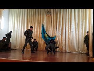 показательное выступления курсантов Костанайской Академий МВД РК н.2011