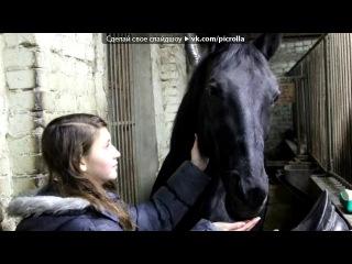 «ЗОЛОТАЯ ПОДКОВА» под музыку KlaimSeyin - А мой смысл жизни, это конный спорт.. Picrolla