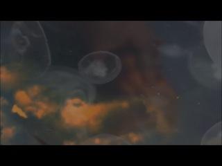JFi - Still at a Standstill (unofficial fan video)
