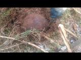 КарПер ТВ. 05.04.14. Железный гриб Скряги