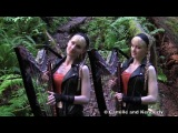 EYE OF THE TIGER - Survivor/Rocky III (Harp Twins electric)