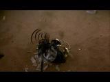 Любимый момент из фильма Маска _ The Mask _ 1994