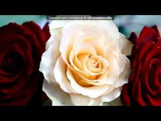 «Красивые Фото • fotiko.ru» под музыку Виктор Лекарь - Эти розы для тебя. Picrolla