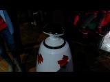 Знакомство Арсения с Роботом Федей :)