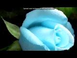 С моей стены под музыку ПОТЕШНАЯ ПАЛАТА( гр.САДко ) - Я встретил розу. Picrolla