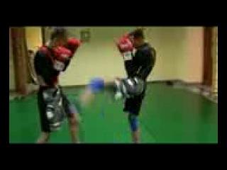 Klerikanec , Fight aliance , MIX FIGHT , Школа бразильского Jui Jitsu , Джиу Джитсу , Самбо отдыхает , Жесть