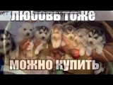 «Со стены Подростки ©» под музыку Stop this Madness - by Said Energizer. Picrolla
