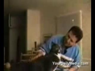 Всих людей, що невирылы, що коты говорять переконае це видео!!!