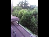 Покровское Стрешнево - Тушино