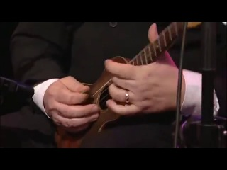 UOGB anarchy in the ukulele