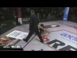 Sergio Pettis MMA Highlight