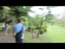 08 - Kyu Shiba Rikyu Garden - Si lo veo! lo veo! lo veo! XD
