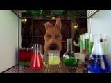 Скуби-Ду 2: Монстры на свободе / Scooby Doo 2: Monsters Unleashed (2004)