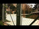 Loaded Boards - Tan Tien in Barcelona by Aleix
