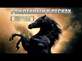 Рожденный в песках / The Young Black Stallion (2003)