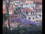 Римские каникулы март 2012