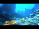 «Шевели ластами!» / «Sammy's avonturen: De geheime doorgang» (2010)