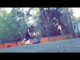 Как собаку в футбол учил играть