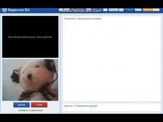 Мишка-педобир в рулетке!))))
