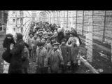 КYPCK - deti Birkenau