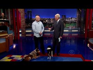 Letterman - 2014.04.29 - Lucy Liu, (Ziggy Marley)
