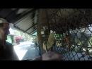Белка в Paradise Family Park, Koh Samui