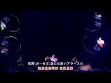 【Animelo Summer Live 2013】ALI PROJECT - Kinjirareta Asobi【Rozen Maiden】