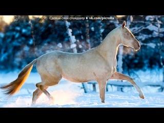 «Со стены Лошади - это не просто животные...» под музыку DJ DimixeR - Далеко,  далеко ускакала в поле молодая лошадь (original mix) ★DJDIMIXER.RU★. Picrolla