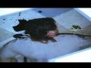 CSI:Место преступления Лас Вегас 4 сезон 14 серия