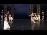 Премьера Лебединого озера в Эрмитажном театре