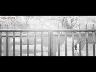 Эрос + Убийство 1969 Япония эротика драма биография