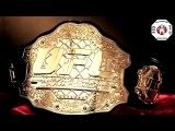 Превью к турниру UFC 173 (русский перевод)