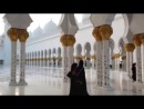 Белый мечеть в Абу -Даби