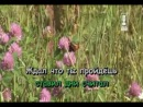 Добры-Молодцы - Наташка караоке