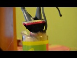 Stop-Motion Monster High.Как Мяулоди путешествовала на моем столе :D
