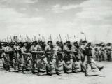 Гладиаторы Второй мировой войны. Серия 5.