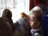 Дружба между детьми животными