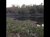 [Marcus Johns] Beautiful Scenery 🌱