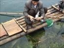 Çin Guilin Bölgesinde Balık Tutmak
