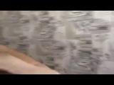 Грозный Чечня Кадыров Рамзан Путин Ловзар Кавказ Дагестан Приора Бпан Тюнинг Лезгинка Крым Новости нтв россия2 аргун Ингушетия стрельба бес придел шали нохчи 95-регион ислам коран сура красавицы кавказа
