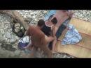 Два мужика трахают бабу на пляже один в киску другой в рот Порно, HD 720,Hardcore, Blowjob, Group Public