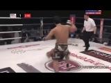 Чеченские и Дагестанские бойцы UFC