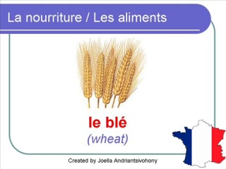French Lesson 28 - FOOD VOCABULARY - NOURRITURE _ ALIMENTS (Food in general)