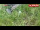 Пєтухи стріляють по нашим під Слов'янськом а російський журналіст їм підказує