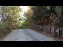 Дорога из Paradise Park. Samui.