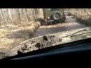 дороги в Корюковском лесу